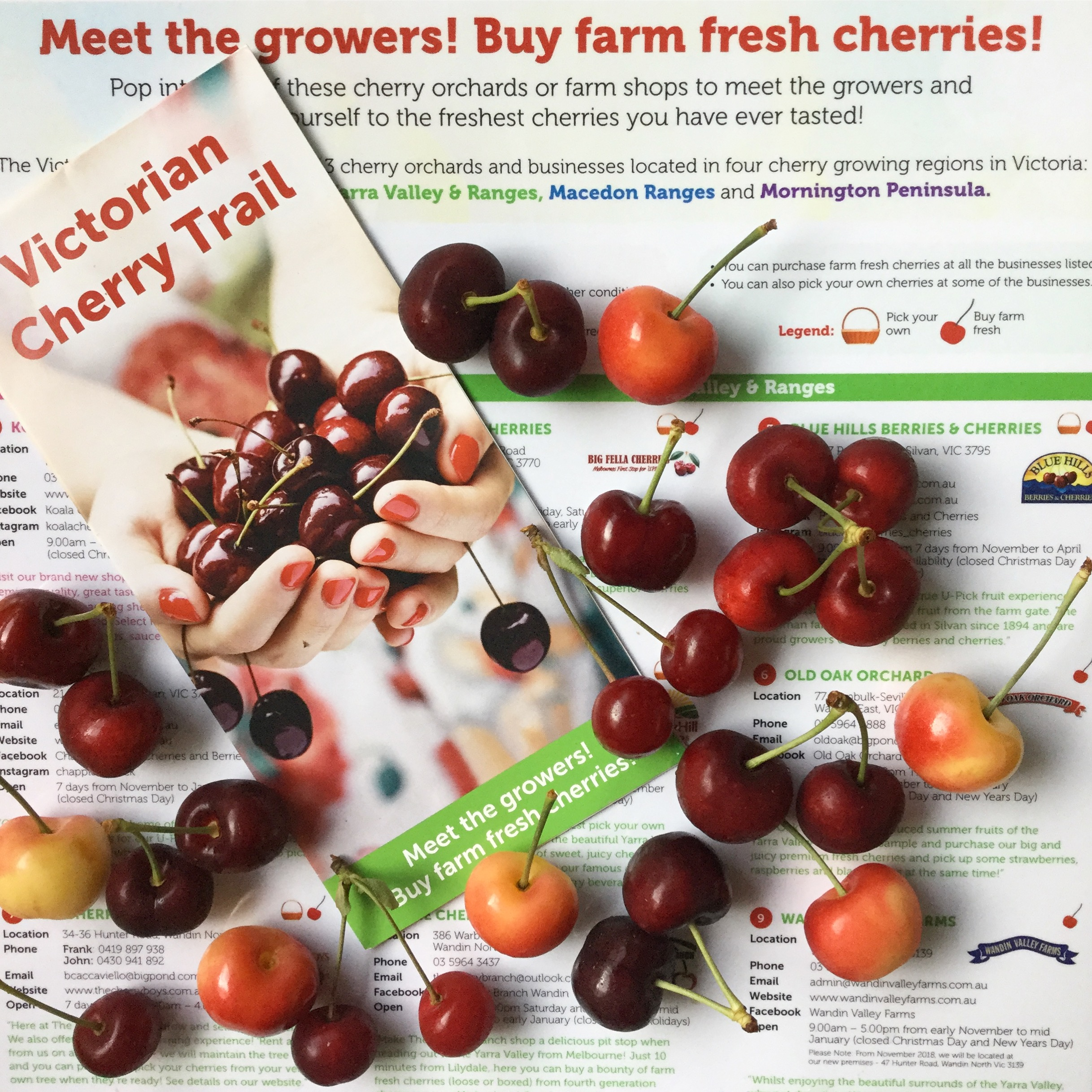 Cherry trail brochure