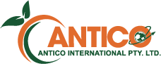 Logo - Antico International