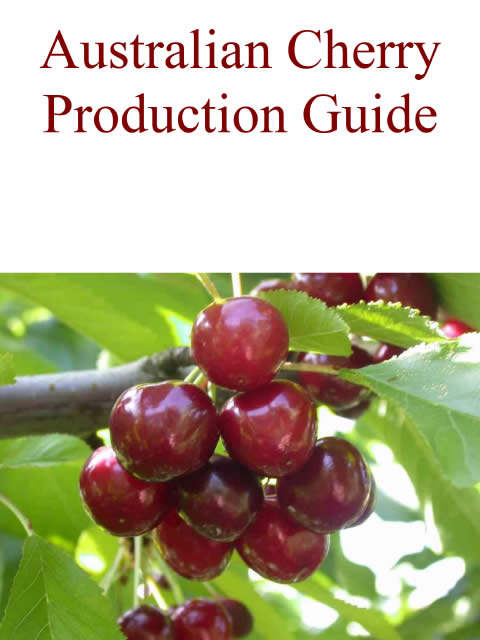 Cover - Australian Cherry Production Guide